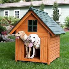 extra large outdoor dog house dog kennel