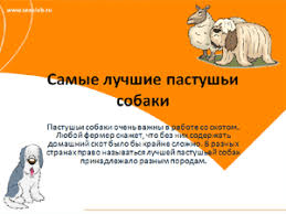 Презентации бесплатные для школьников скачать скачать бесплатно  Бесплатно скачать презентацию Самые лучшие пастушьи собаки