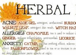 Herbal Remedies Chart