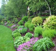 Small Picture Best 25 Backyard hill landscaping ideas on Pinterest Sloped