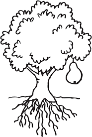 Small Picture Bare Tree Outline Coloring PageTreePrintable Coloring Pages Free