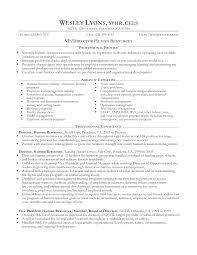 Resume For Professional Job Professional Resume Formatting Resume Samples 19