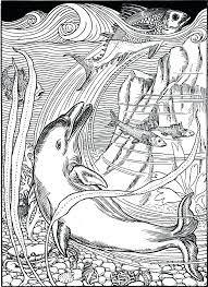 Dolphins Coloring Sheets Free Dolphin Coloring Pages To Print And