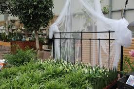 Pflanzen Für Das Schlafzimmer Gartencenter Zulauf Pflanzen Kaufen