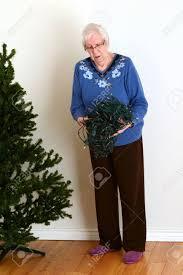 Untangle Christmas Tree Lights Senior Trying To Untangle Christmas Lights