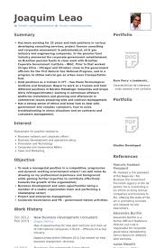 Business Consultant Resume Sample 7 New Business Development Consultant  Resume Samples
