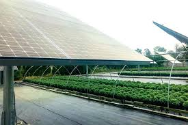 greenhouse roof panels corrugated clear greenhouses home