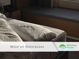 mold on mattresses symptoms and other