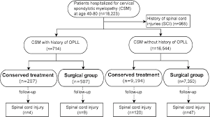 Spinal Cord Injury Chart Risk Of Spinal Cord Injury In Patients With Cervical