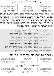Al Hamichya Chart The Best Birkat Hamazon Text Printable Baker S Website