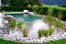 Natural looking in ground pools Chemical Free Health Nut News How To Build Natural Swimming Pool Diy