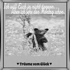 Original Whatsapp Lustige Sprüche Bilder Kostenlos Zitate Geburtstag