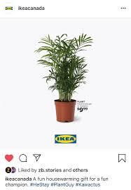 Ikea Canada Makes People Go Aha Aha Aha Stimulant
