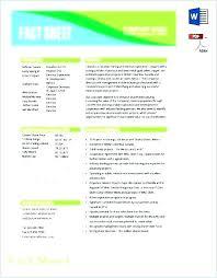 Company Fact Sheet Sample Business Fact Sheet Template Business Fact Sheet Example