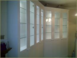 display cabinet with glass doors mounted