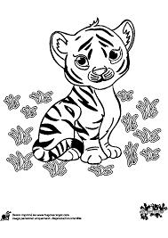 Dessins Colorier Coloriage Tigre Imprimer Imprime Dessin Gratuit