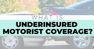 michigan underinsured motorist coverage
