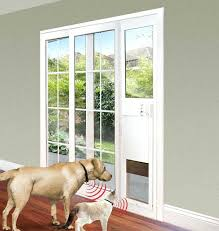 glass dog doors notable dog door sliding glass door best sliding glass dog door ideas on glass dog doors