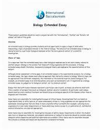 Example Philosophy Essay Ib Philosophy Essay Examples