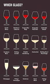 Types Of Drinking Glasses Chart How To Sound Like A Wine Expert In 9 Basic Steps Wine Wine