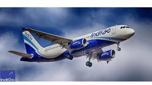 Indigo Airlines Login Indigo Airlines Cost Reduction