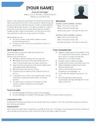 25 Senior Account Executive Resume