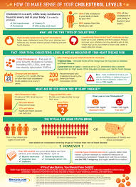 How To Make Sense Of Your Cholesterol Level Infographic