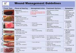 Hse National Wound Management Guidelines Pdf Free Download
