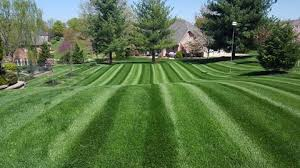 Mowing Patterns Extraordinary Lawn Care Tip of the Month Mowing Patterns Grasshopper Mower