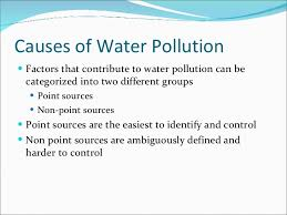 essay about pollution causes and effects and solutions