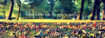 Beautiful Quotes For Facebook Timeline Best Of Beautiful Life Quote Facebook Cover Photos Quotes Pinterest