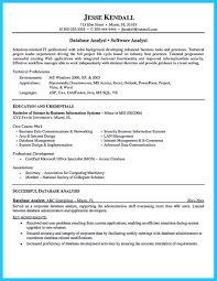Web Analyst Resume Sample cool High Quality Data Analyst Resume Sample from Professionals 38