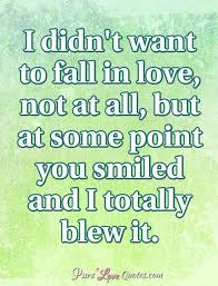 Fall In Love Quotes Mesmerizing I Didn't Want To Fall In Love Not At All But At Some Point You