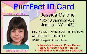 Id Card Image Staff cxjh027