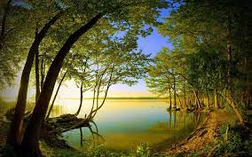 Natural View Wallpapers - Top Free ...