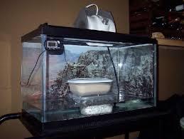 homemade leopard gecko incubator informed is forearmed