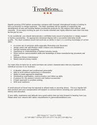 Computer Programmer Resume Skills Professional Phd Essay Editing