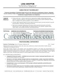 It Director Resume Samples Executive Director Resume Samples It ...