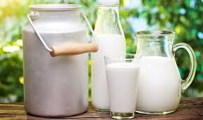 Почему скисает молоко Как проходит процесс скисания  молоко в различной таре