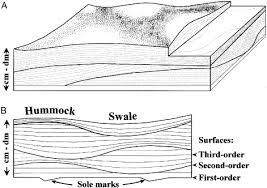 swaley cross stratification
