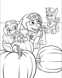 Small Picture Paw patrol coloring pages in pumpkin patch ColoringStar