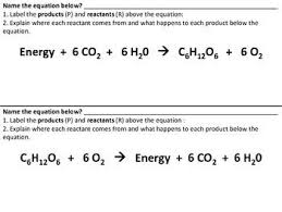 Photosynthesis And Cellular Respiration Comparison With