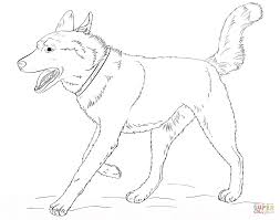 Small Picture Husky coloring page Free Printable Coloring Pages