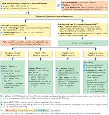 Pathophysiology Of Pyelonephritis In Flow Chart Phe Uti Guideline Phe Dh Dwp Guideline Guidelines