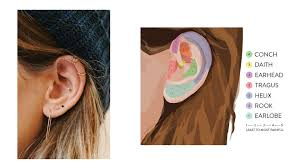 Names Of Different Ear Piercings And Pain Levels Lee Renee