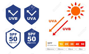 Uv Care Graphic Set Shield And Chart