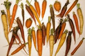 List Of Root Vegetables Wikipedia