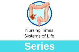 In ec, a type of white blood cell, called the eosinophil, gathers in large numbers in the colon. Gastrointestinal Tract 5 The Anatomy And Functions Of The Large Intestine Nursing Times