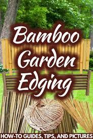 bamboo garden edging how to guides