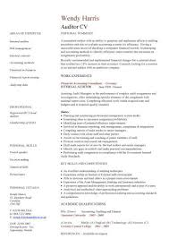 auditor CV sample, Bookkeeping and accounting skills, on-site audits, CV